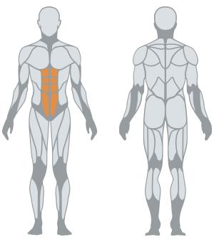 http://panattasport.com/resources/products/1fe212/muscoli.jpg