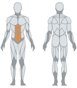 http://www.panattasport.com/resources/products/1fe216/muscoli.jpg